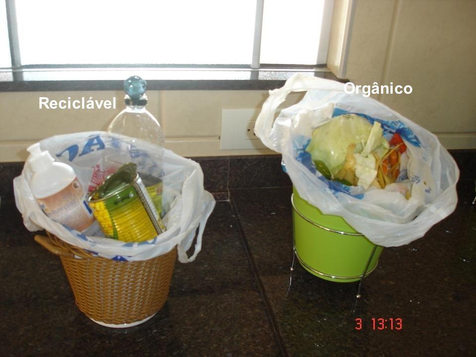 Reciclável Orgânico