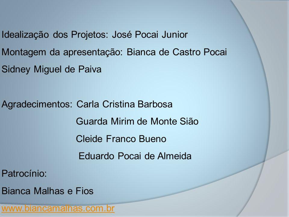 Idealização dos Projetos: José Pocai Junior Montagem da apresentação: Bianca de Castro Pocai Sidney Miguel de Paiva Agradecimentos: Carla Cristina Bar