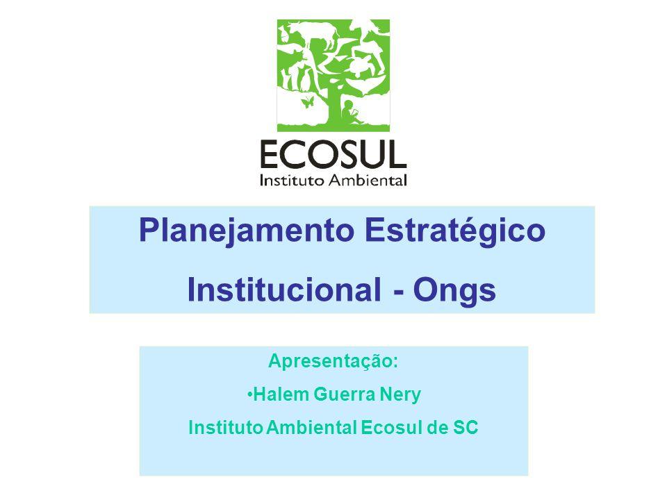 Planejamento Estratégico Institucional - Ongs Apresentação: Halem Guerra Nery Instituto Ambiental Ecosul de SC