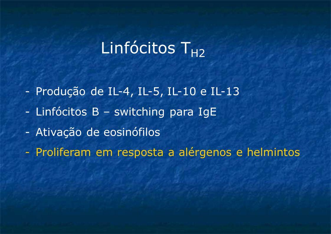Linfócitos T H2 -Produção de IL-4, IL-5, IL-10 e IL-13 -Linfócitos B – switching para IgE -Ativação de eosinófilos -Proliferam em resposta a alérgenos