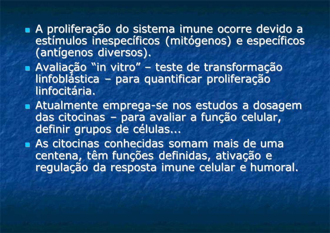 A proliferação do sistema imune ocorre devido a estímulos inespecíficos (mitógenos) e específicos (antígenos diversos).