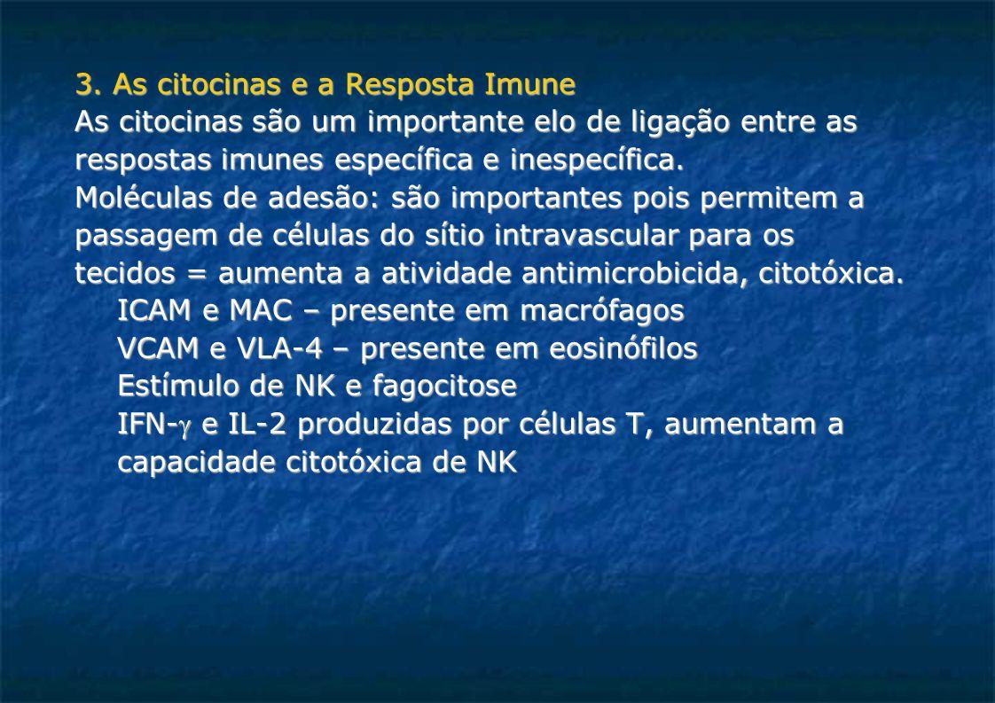 3. As citocinas e a Resposta Imune As citocinas são um importante elo de ligação entre as respostas imunes específica e inespecífica. Moléculas de ade
