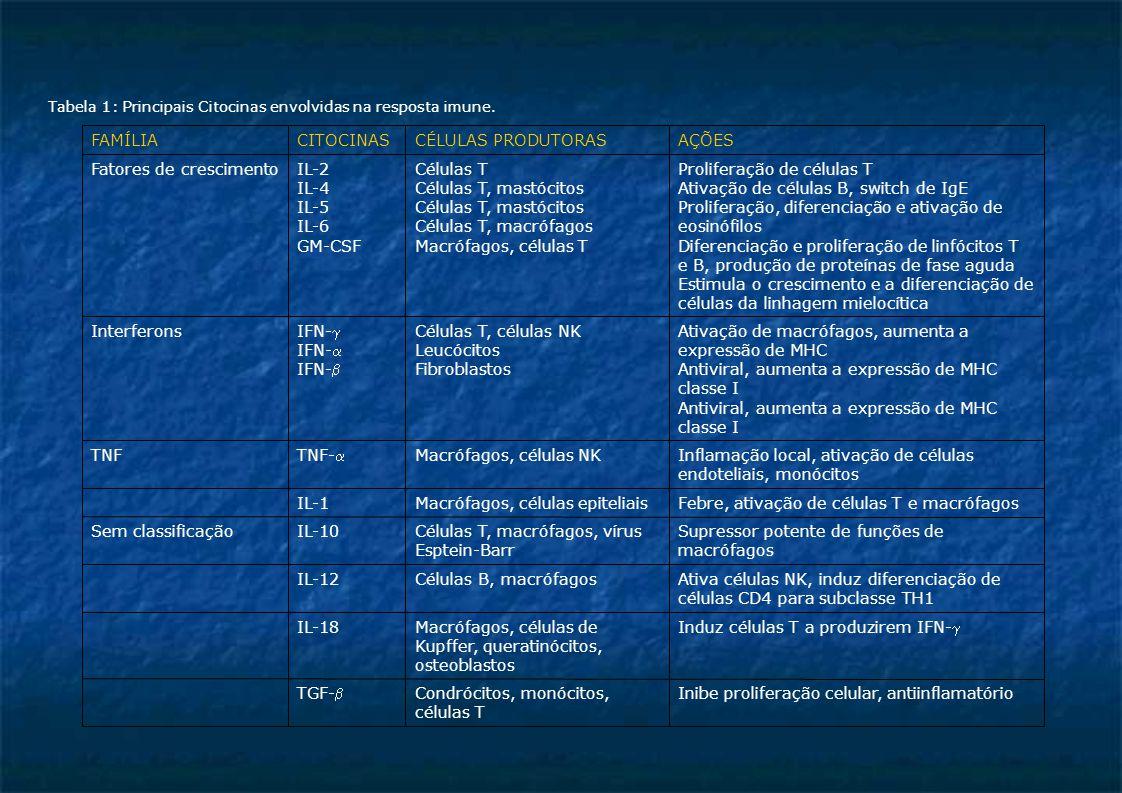 Tabela 1: Principais Citocinas envolvidas na resposta imune. Inibe proliferação celular, antiinflamatórioCondrócitos, monócitos, células T TGF- Induz