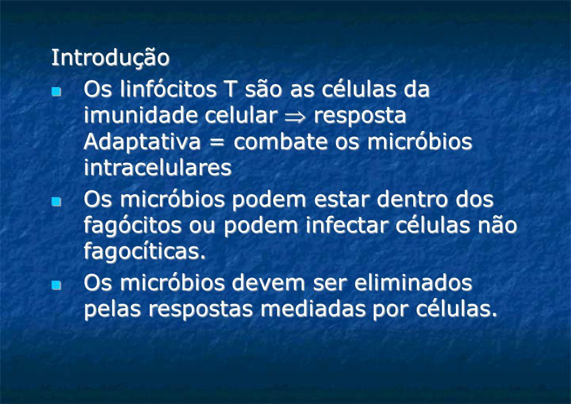 Introdução Os linfócitos T são as células da imunidade celular  resposta Adaptativa = combate os micróbios intracelulares Os linfócitos T são as células da imunidade celular  resposta Adaptativa = combate os micróbios intracelulares Os micróbios podem estar dentro dos fagócitos ou podem infectar células não fagocíticas.