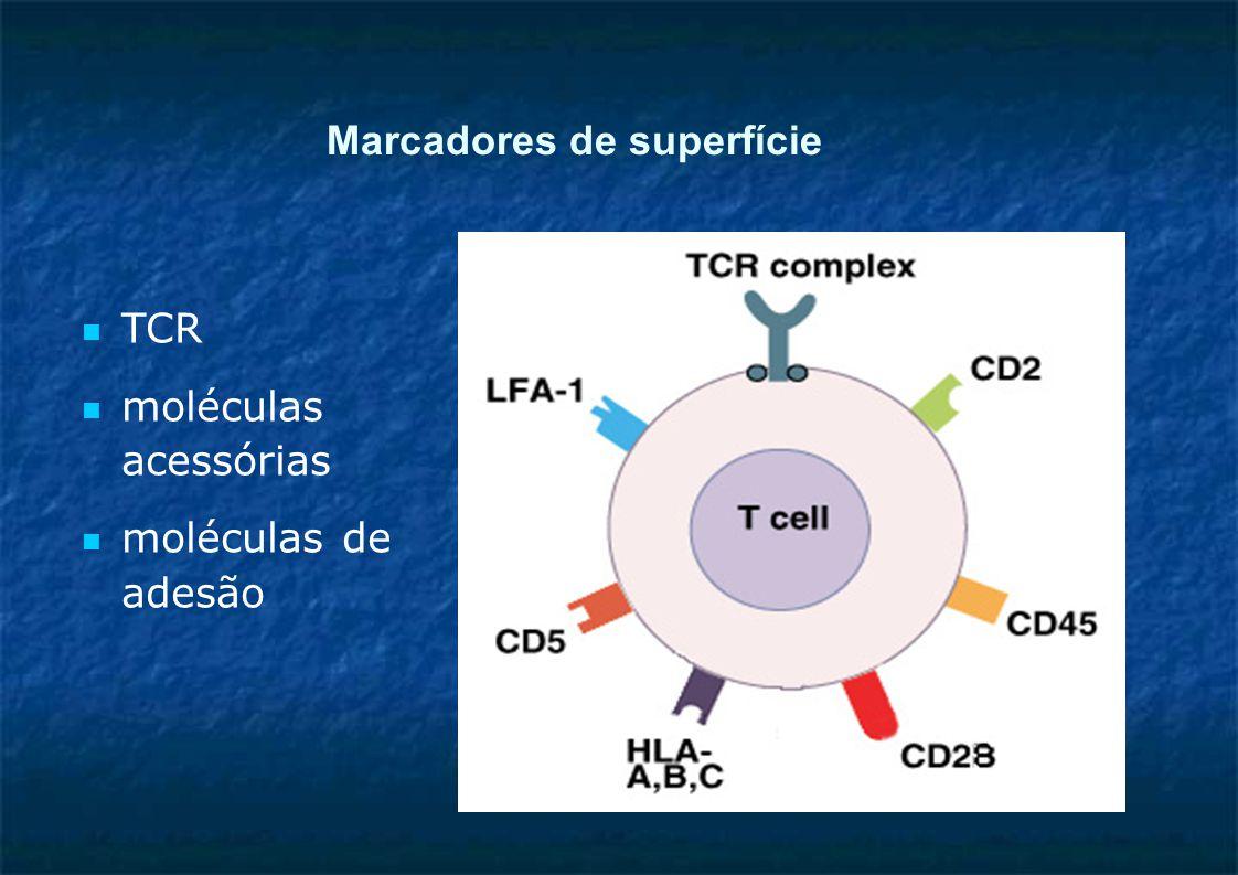 Marcadores de superfície TCR moléculas acessórias moléculas de adesão