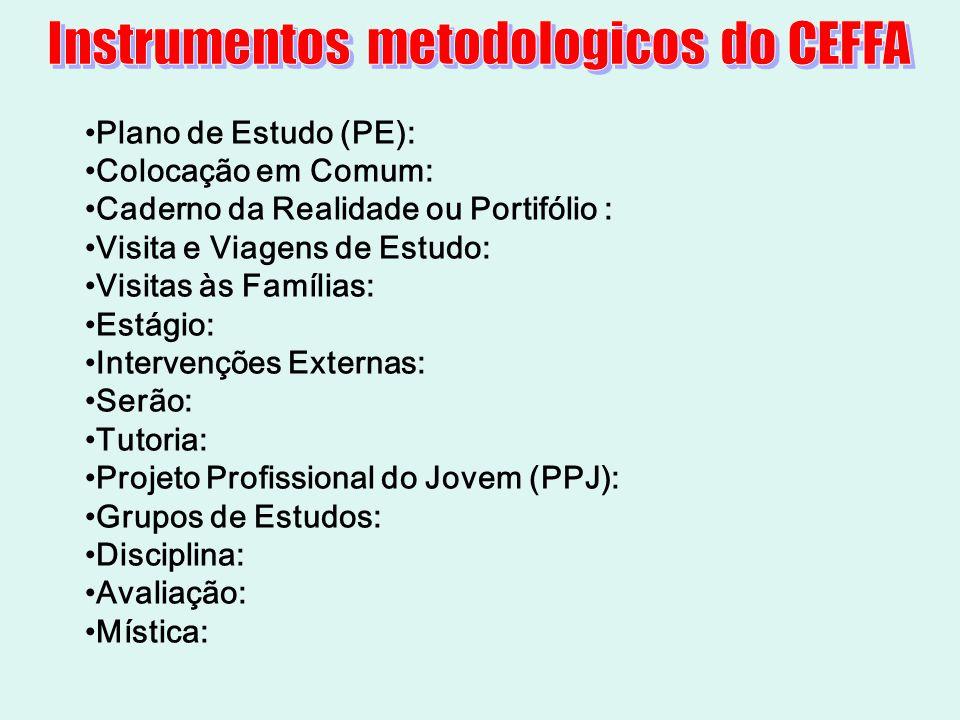 Plano de Estudo (PE): Colocação em Comum: Caderno da Realidade ou Portifólio : Visita e Viagens de Estudo: Visitas às Famílias: Estágio: Intervenções
