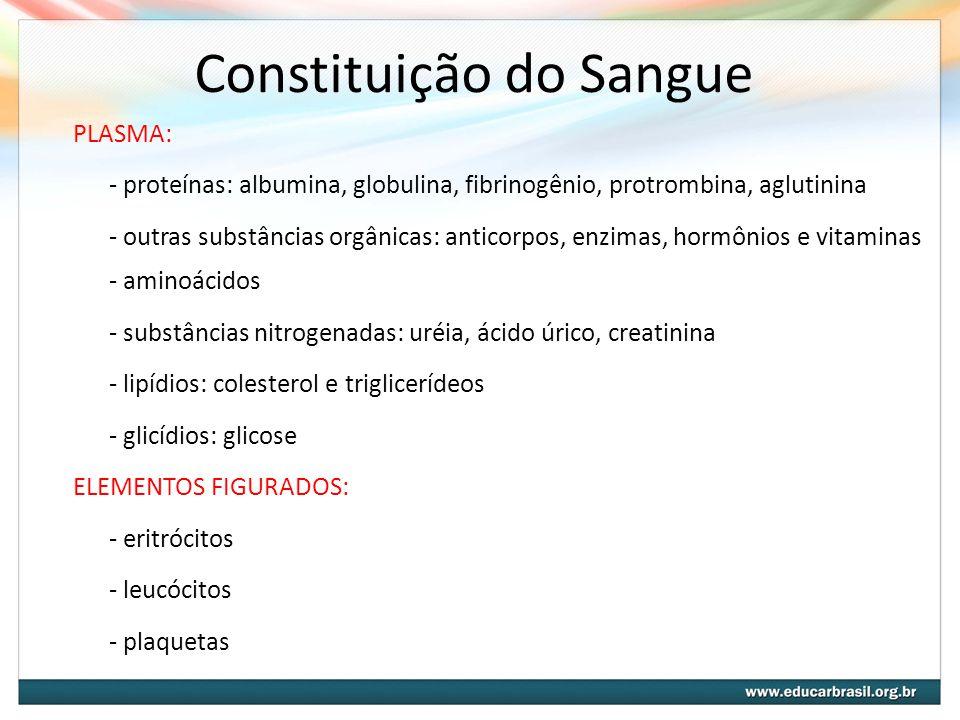 Constituição do Sangue PLASMA: - proteínas: albumina, globulina, fibrinogênio, protrombina, aglutinina - outras substâncias orgânicas: anticorpos, enz