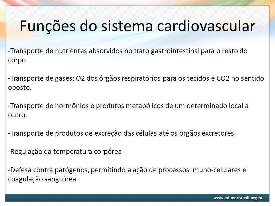 Funções do sistema cardiovascular -Transporte de nutrientes absorvidos no trato gastrointestinal para o resto do corpo -Transporte de gases: O2 dos ór