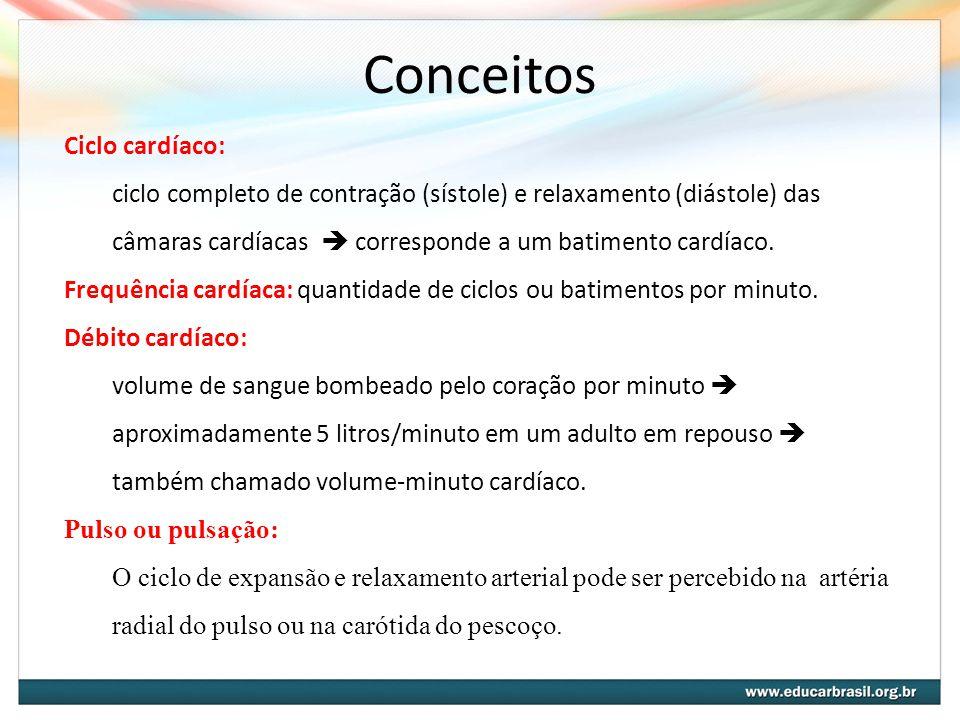 Conceitos Ciclo cardíaco: ciclo completo de contração (sístole) e relaxamento (diástole) das câmaras cardíacas  corresponde a um batimento cardíaco.