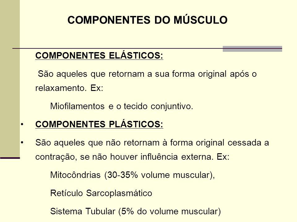 COMPONENTES DO MÚSCULO COMPONENTES ELÁSTICOS: São aqueles que retornam a sua forma original após o relaxamento. Ex: Miofilamentos e o tecido conjuntiv