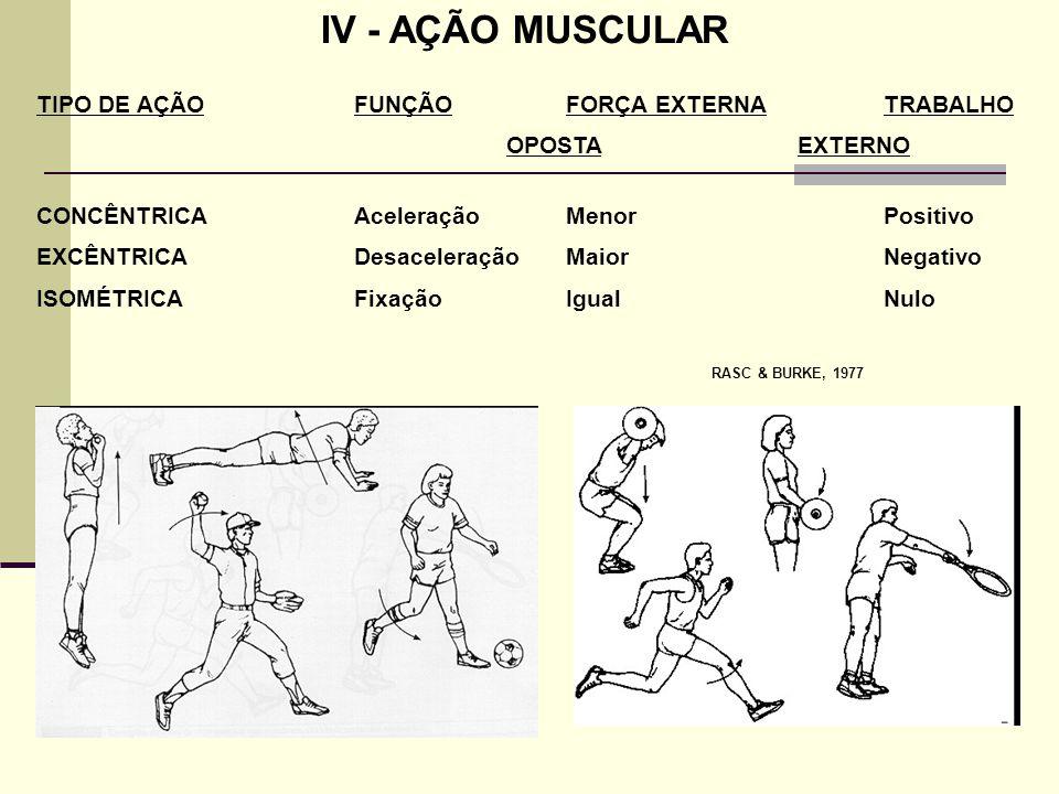 IV - AÇÃO MUSCULAR TIPO DE AÇÃOFUNÇÃOFORÇA EXTERNATRABALHO OPOSTA EXTERNO CONCÊNTRICAAceleraçãoMenorPositivo EXCÊNTRICADesaceleraçãoMaiorNegativo ISOM