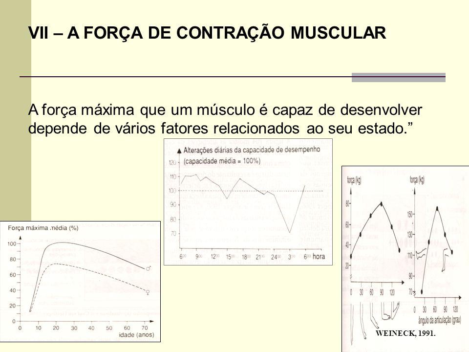 """VII – A FORÇA DE CONTRAÇÃO MUSCULAR A força máxima que um músculo é capaz de desenvolver depende de vários fatores relacionados ao seu estado."""" WEINEC"""