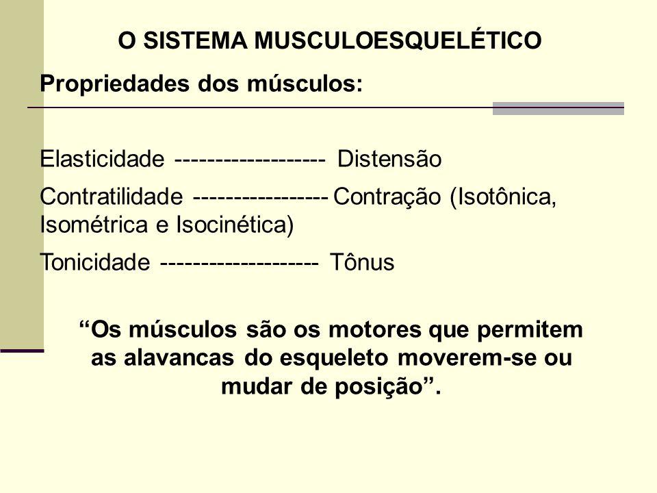 Propriedades dos músculos: Elasticidade ------------------- Distensão Contratilidade ----------------- Contração (Isotônica, Isométrica e Isocinética)