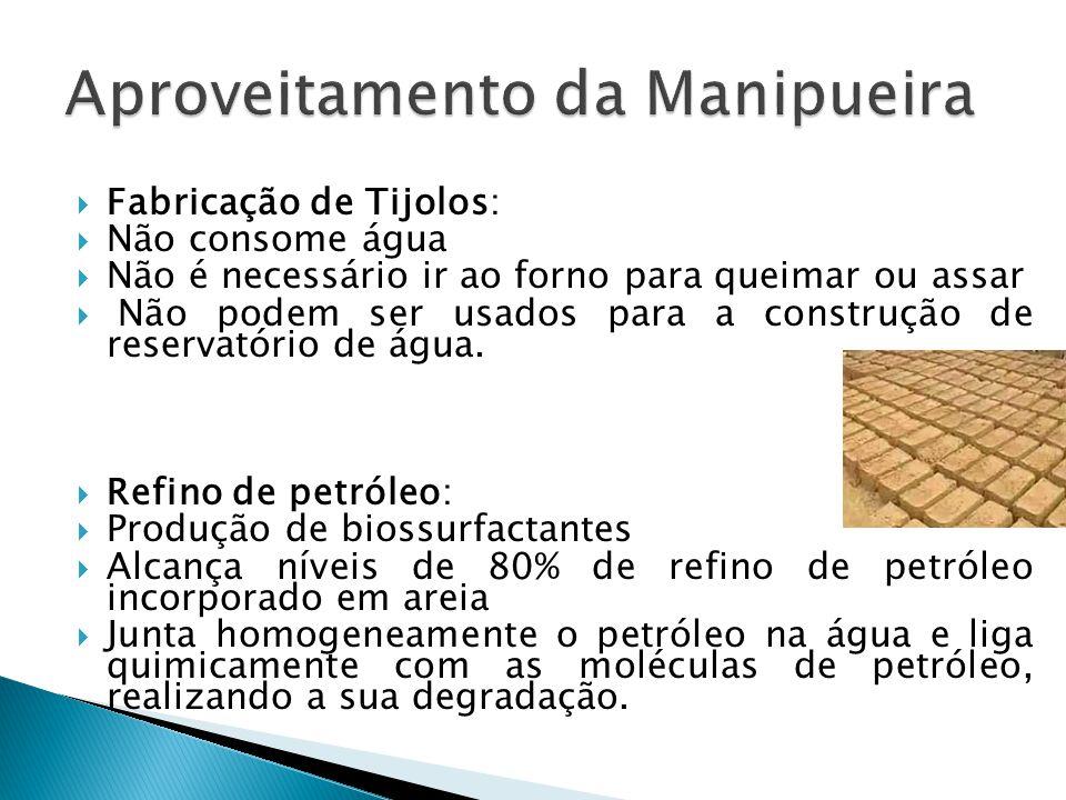  Fabricação de Tijolos:  Não consome água  Não é necessário ir ao forno para queimar ou assar  Não podem ser usados para a construção de reservató
