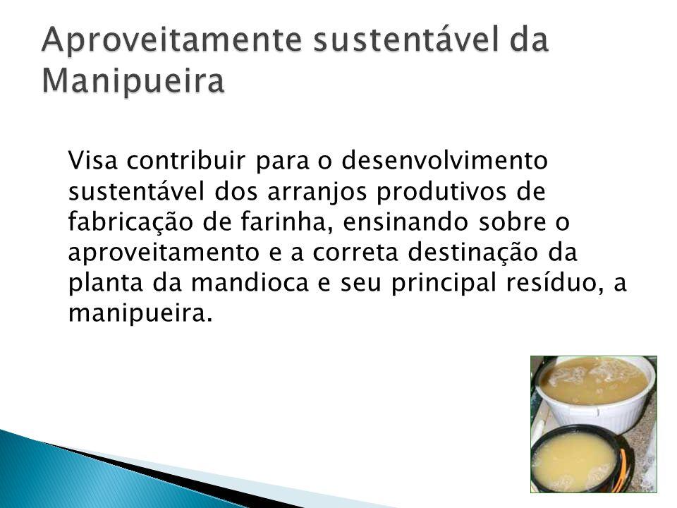 Visa contribuir para o desenvolvimento sustentável dos arranjos produtivos de fabricação de farinha, ensinando sobre o aproveitamento e a correta dest