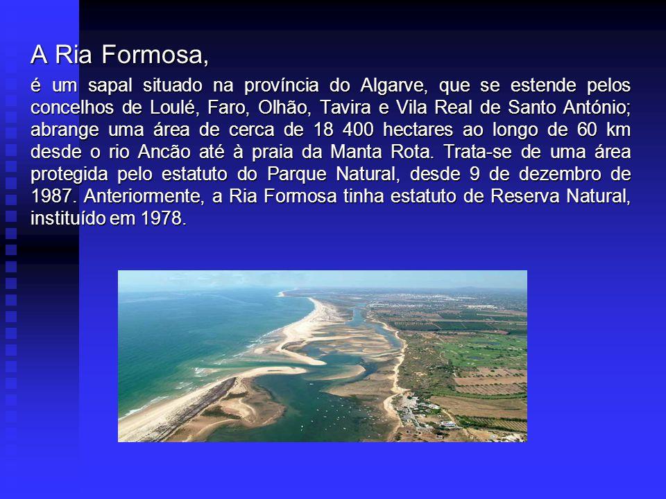 A Ria Formosa, é um sapal situado na província do Algarve, que se estende pelos concelhos de Loulé, Faro, Olhão, Tavira e Vila Real de Santo António; abrange uma área de cerca de 18 400 hectares ao longo de 60 km desde o rio Ancão até à praia da Manta Rota.