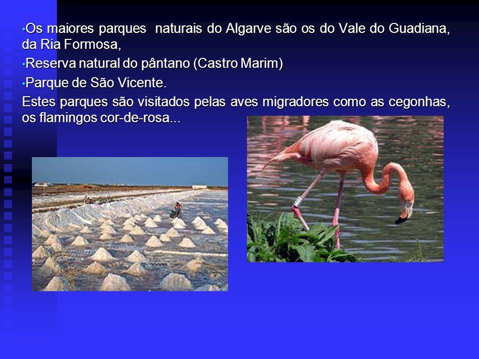 Os maiores parques naturais do Algarve são os do Vale do Guadiana, da Ria Formosa, Os maiores parques naturais do Algarve são os do Vale do Guadiana, da Ria Formosa, Reserva natural do pântano (Castro Marim) Reserva natural do pântano (Castro Marim) Parque de São Vicente.