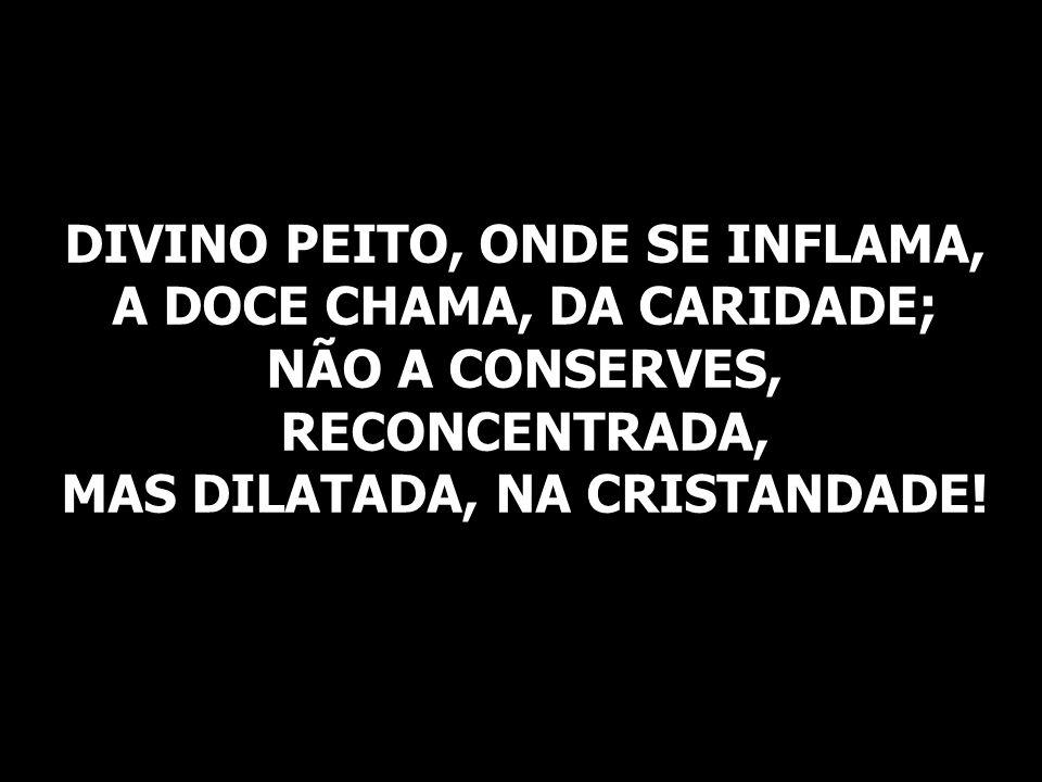 DIVINO PEITO, ONDE SE INFLAMA, A DOCE CHAMA, DA CARIDADE; NÃO A CONSERVES, RECONCENTRADA, MAS DILATADA, NA CRISTANDADE!