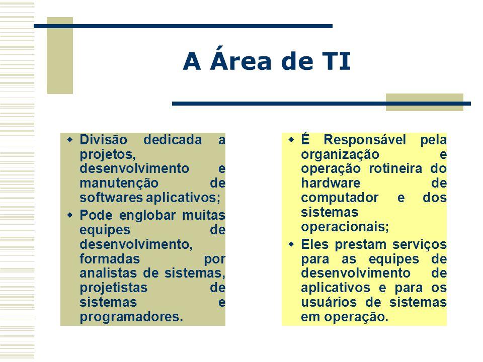 A Área de TI  É Responsável pela organização e operação rotineira do hardware de computador e dos sistemas operacionais;  Eles prestam serviços para