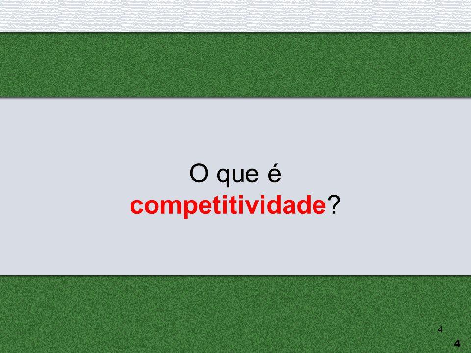 5  O que é competitividade e como ela se materializa.
