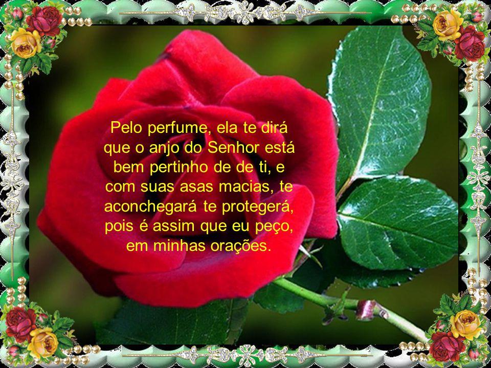 Pelo perfume, ela te dirá que o anjo do Senhor está bem pertinho de de ti, e com suas asas macias, te aconchegará te protegerá, pois é assim que eu peço, em minhas orações.