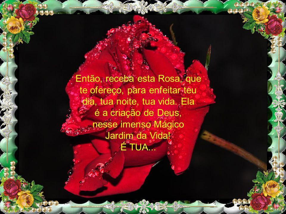 Então, receba esta Rosa, que te ofereço, para enfeitar teu dia, tua noite, tua vida.