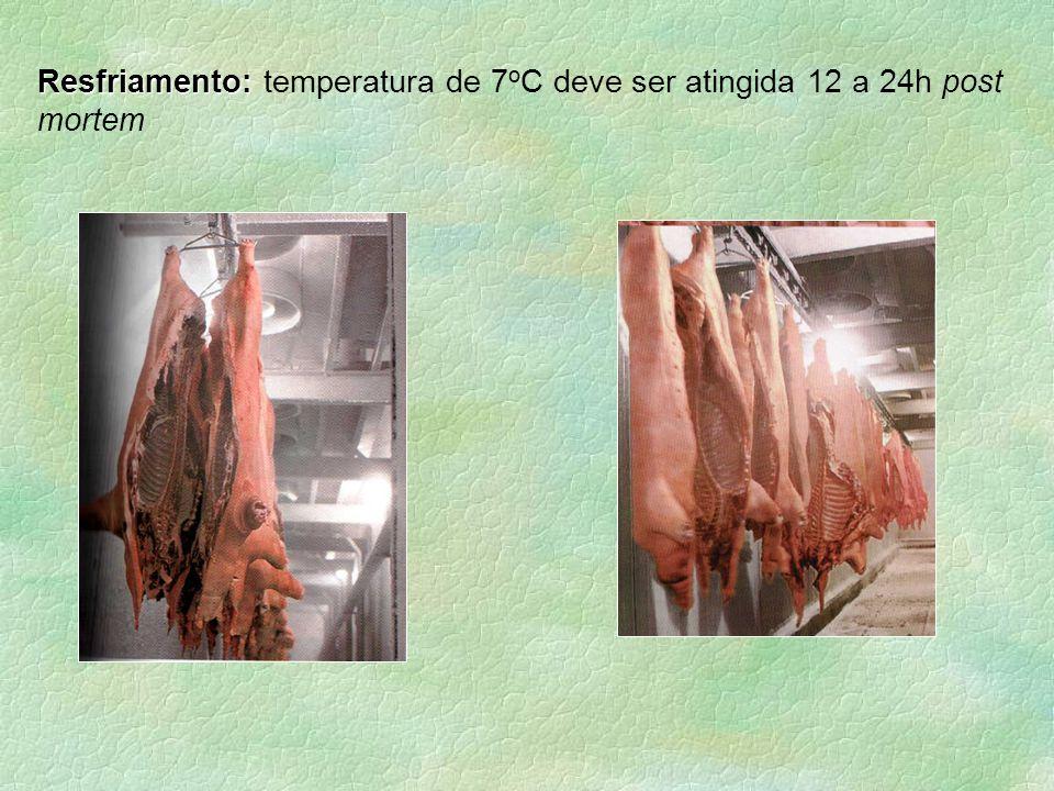 Resfriamento: Resfriamento: temperatura de 7 o C deve ser atingida 12 a 24h post mortem
