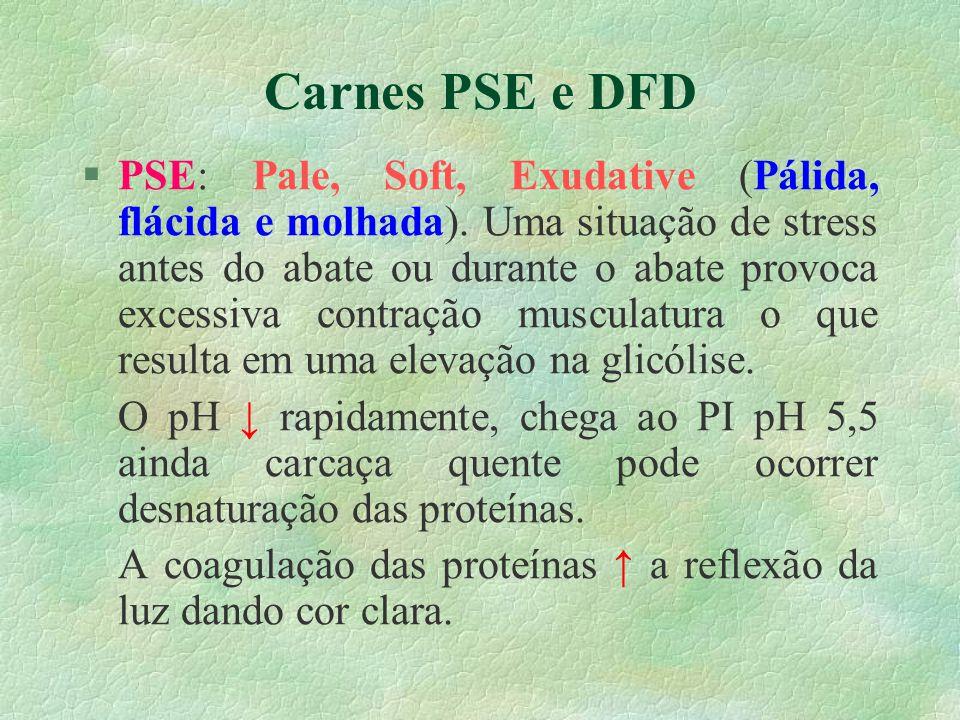 Carnes PSE e DFD §PSE: Pale, Soft, Exudative (Pálida, flácida e molhada). Uma situação de stress antes do abate ou durante o abate provoca excessiva c