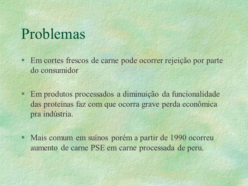 Problemas §Em cortes frescos de carne pode ocorrer rejeição por parte do consumidor §Em produtos processados a diminuição da funcionalidade das proteí