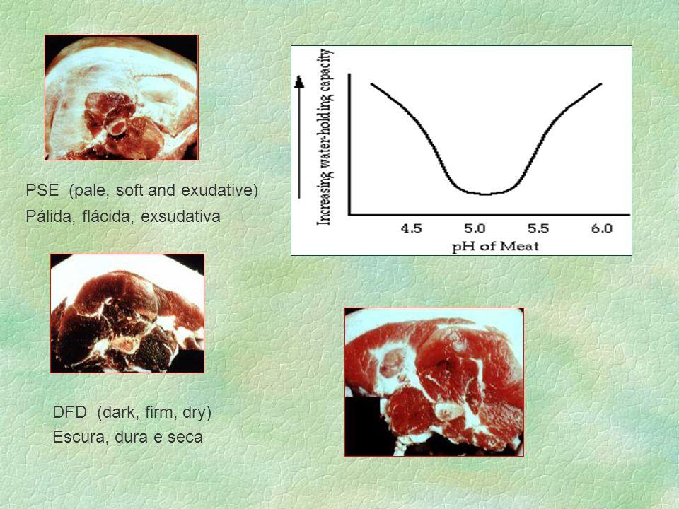 PSE (pale, soft and exudative) Pálida, flácida, exsudativa DFD (dark, firm, dry) Escura, dura e seca