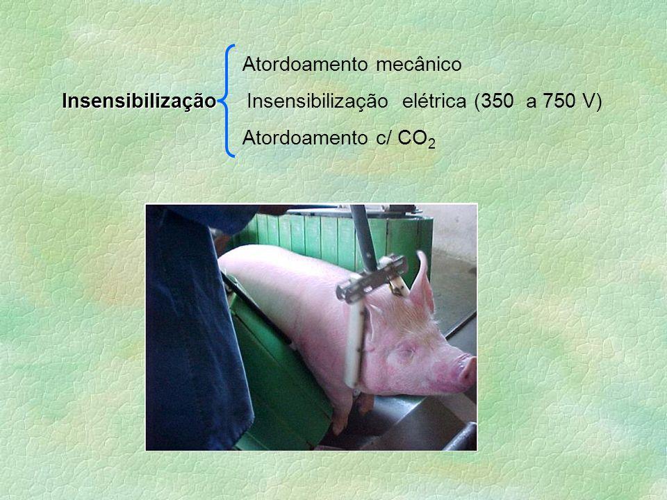 Atordoamento mecânico Insensibilização Insensibilização Insensibilização elétrica (350 a 750 V) Atordoamento c/ CO 2