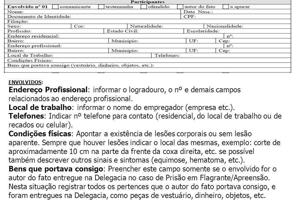 ENVOLVIDOS: Endereço Profissional: informar o logradouro, o nº e demais campos relacionados ao endereço profissional. Local de trabalho: informar o no