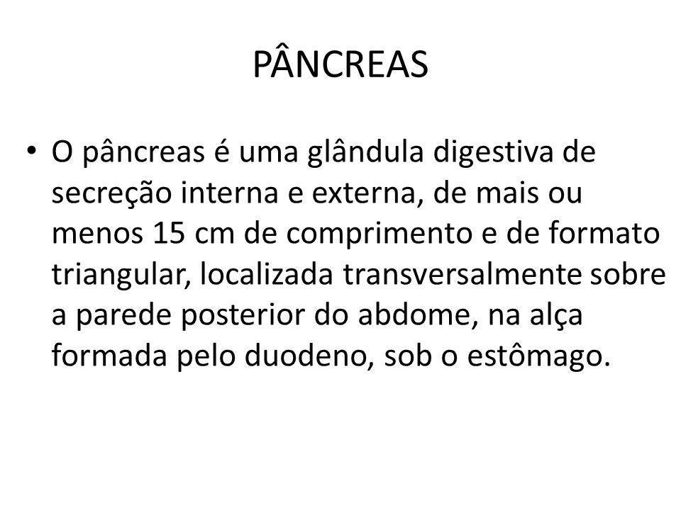 PÂNCREAS O pâncreas é uma glândula digestiva de secreção interna e externa, de mais ou menos 15 cm de comprimento e de formato triangular, localizada