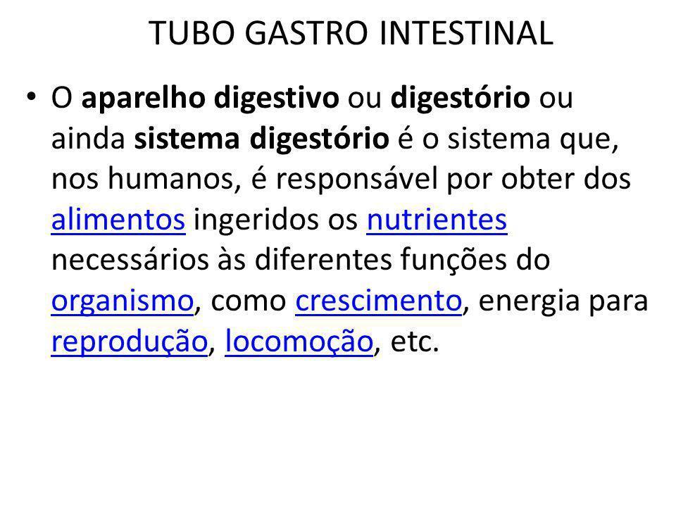 TUBO GASTRO INTESTINAL O aparelho digestivo ou digestório ou ainda sistema digestório é o sistema que, nos humanos, é responsável por obter dos alimen