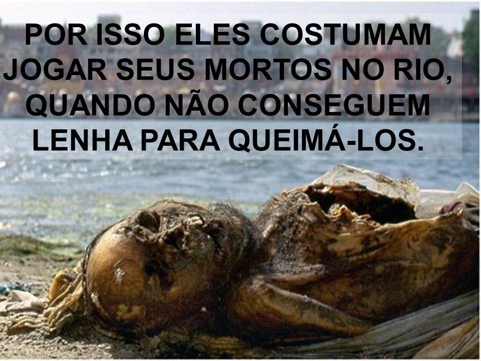 AO RIO GÂNGES É ATRIBUÍDA A ORIGEM E O FIM DA VIDA