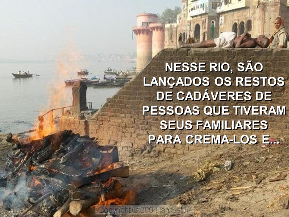 """E ASSIM, PESSOAS E CARNIÇA DE DEFUNTOS CONVIVEM LADO A LADO NO RIO""""SAGRADO""""."""