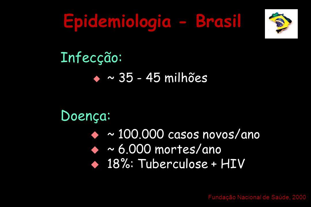 Epidemiologia - Brasil Infecção:   ~ 35 - 45 milhões Doença:   ~ 100.000 casos novos/ano   ~ 6.000 mortes/ano   18%: Tuberculose + HIV   ~ 1