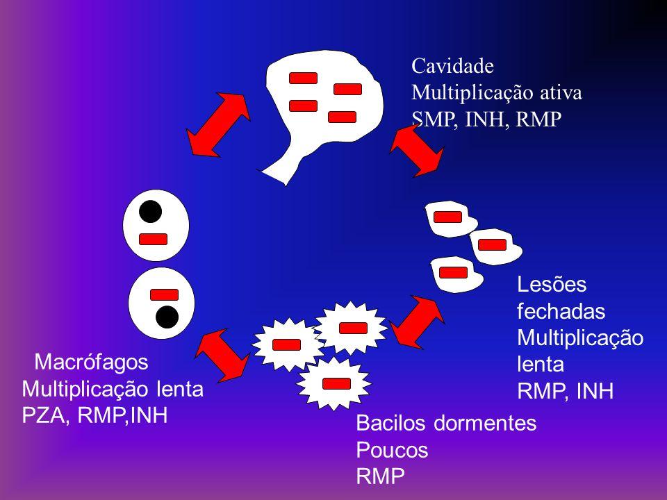 Cavidade Multiplicação ativa SMP, INH, RMP Bacilos dormentes Poucos RMP Macrófagos Multiplicação lenta PZA, RMP,INH Lesões fechadas Multiplicação lent
