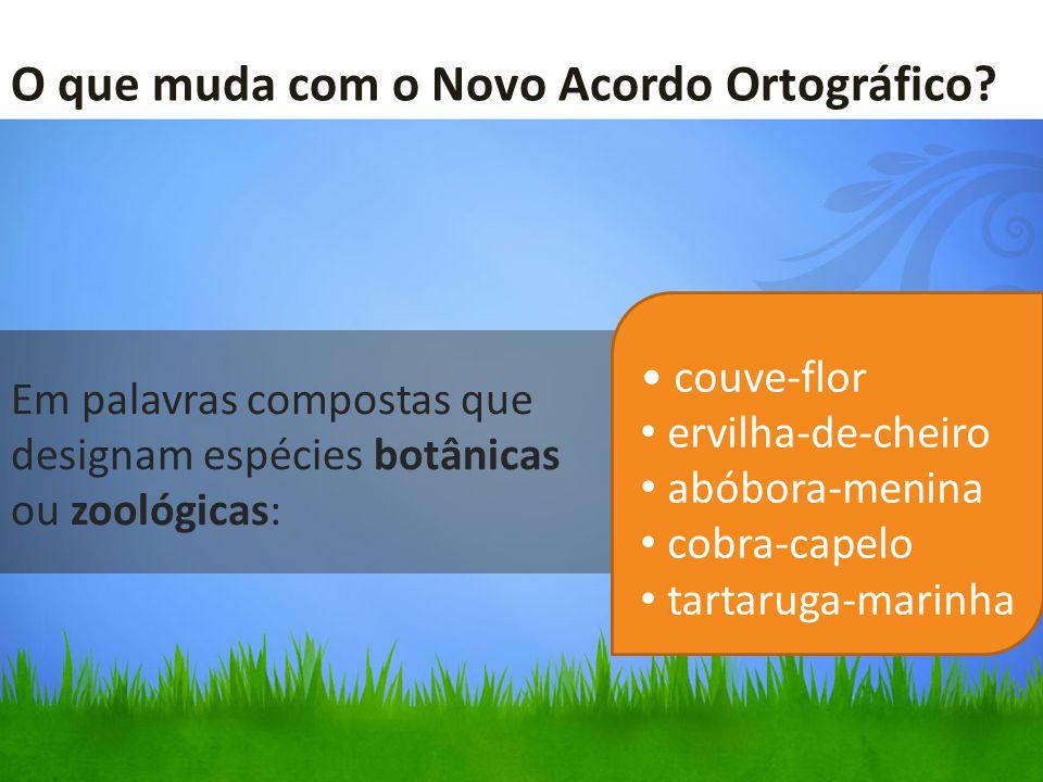 Em palavras compostas que designam espécies botânicas ou zoológicas: couve-flor ervilha-de-cheiro abóbora-menina cobra-capelo tartaruga-marinha O que muda com o Novo Acordo Ortográfico?