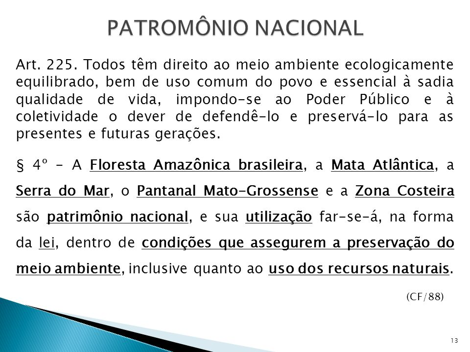 PATROMÔNIO NACIONAL Art.225.