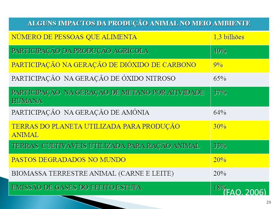ALGUNS IMPACTOS DA PRODUÇÃO ANIMAL NO MEIO AMBIENTE NÚMERO DE PESSOAS QUE ALIMENTA 1,3 bilhões PARTICIPAÇÃO DA PRODUÇÃO AGRÍCOLA 40% PARTICIPAÇÃO NA GERAÇÃO DE DIÓXIDO DE CARBONO 9% PARTICIPAÇÃO NA GERAÇÃO DE ÓXIDO NITROSO 65% PARTICIPAÇÃO NA GERAÇÃO DE METANO POR ATIVIDADE HUMANA 37% PARTICIPAÇÃO NA GERAÇÃO DE AMÔNIA 64% TERRAS DO PLANETA UTILIZADA PARA PRODUÇÃO ANIMAL 30% TERRAS CULTIVÁVEIS UTILIZADA PARA RAÇÃO ANIMAL 33% PASTOS DEGRADADOS NO MUNDO 20% BIOMASSA TERRESTRE ANIMAL (CARNE E LEITE) 20% EMISSÃO DE GASES DO EFEITO ESTUFA 18% 20 (FAO, 2006)