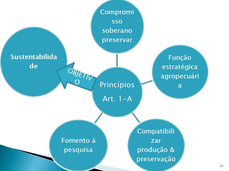 24 Princípios Art.