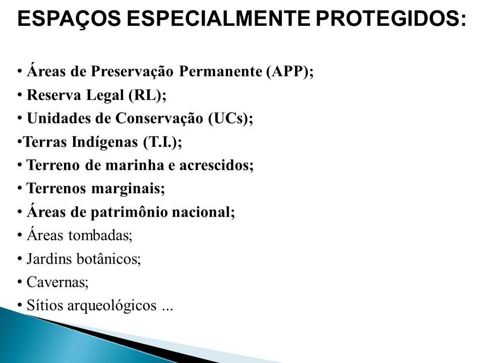 (FONTE: LIMA, André.Zoneamento Ecológico-econômico à luz dos direitos socioambientais.