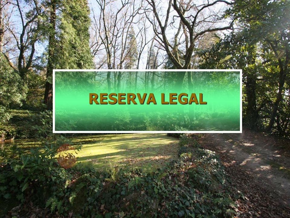 RESERVA LEGAL 42