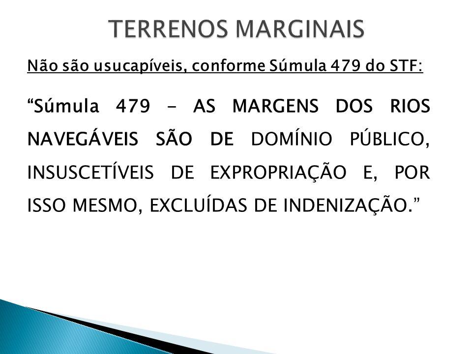Não são usucapíveis, conforme Súmula 479 do STF: Súmula 479 - AS MARGENS DOS RIOS NAVEGÁVEIS SÃO DE DOMÍNIO PÚBLICO, INSUSCETÍVEIS DE EXPROPRIAÇÃO E, POR ISSO MESMO, EXCLUÍDAS DE INDENIZAÇÃO.