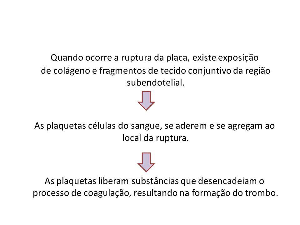 Quando ocorre a ruptura da placa, existe exposição de colágeno e fragmentos de tecido conjuntivo da região subendotelial. As plaquetas células do sang