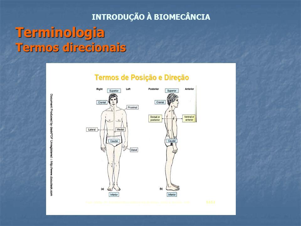 Terminologia Termos direcionais