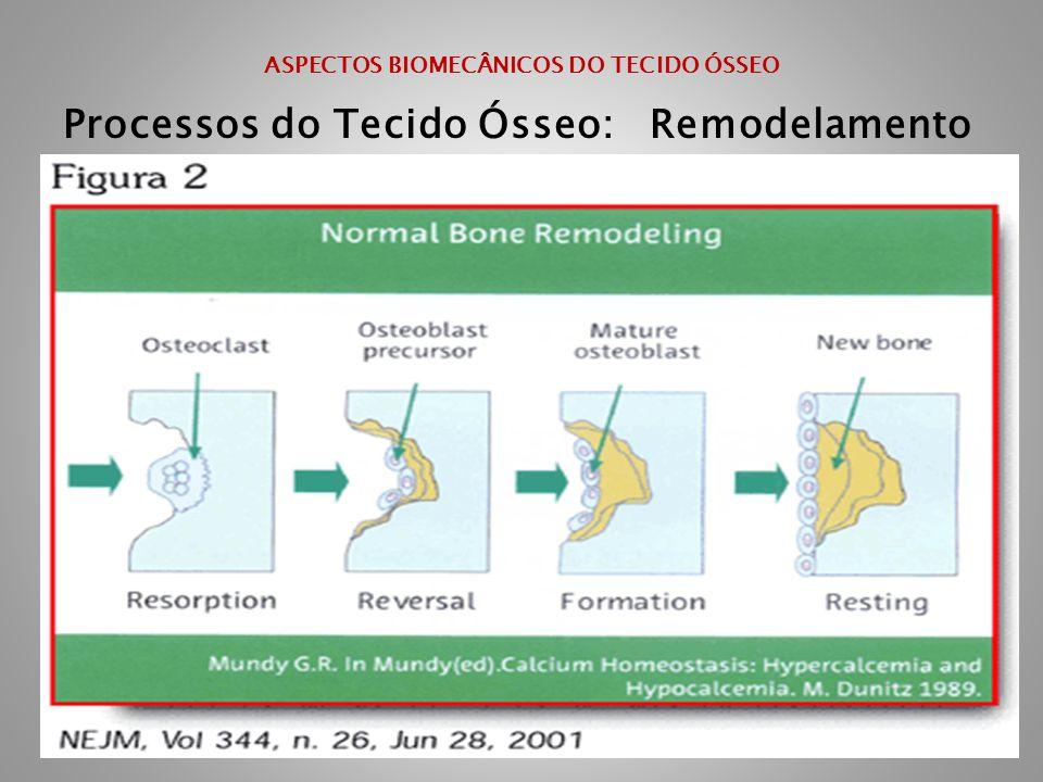 ASPECTOS BIOMECÂNICOS DO TECIDO ÓSSEO Processos do Tecido Ósseo: Remodelamento