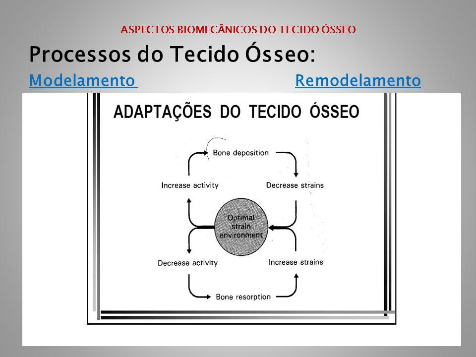 ASPECTOS BIOMECÂNICOS DO TECIDO ÓSSEO Processos do Tecido Ósseo: Modelamento Remodelamento