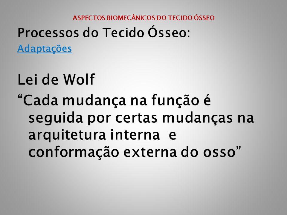 """ASPECTOS BIOMECÂNICOS DO TECIDO ÓSSEO Processos do Tecido Ósseo: Adaptações Lei de Wolf """"Cada mudança na função é seguida por certas mudanças na arqui"""